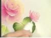 Obrázek k videu Růže