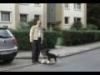 Obrázek k videu OBI